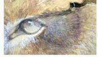 leuleross-detail